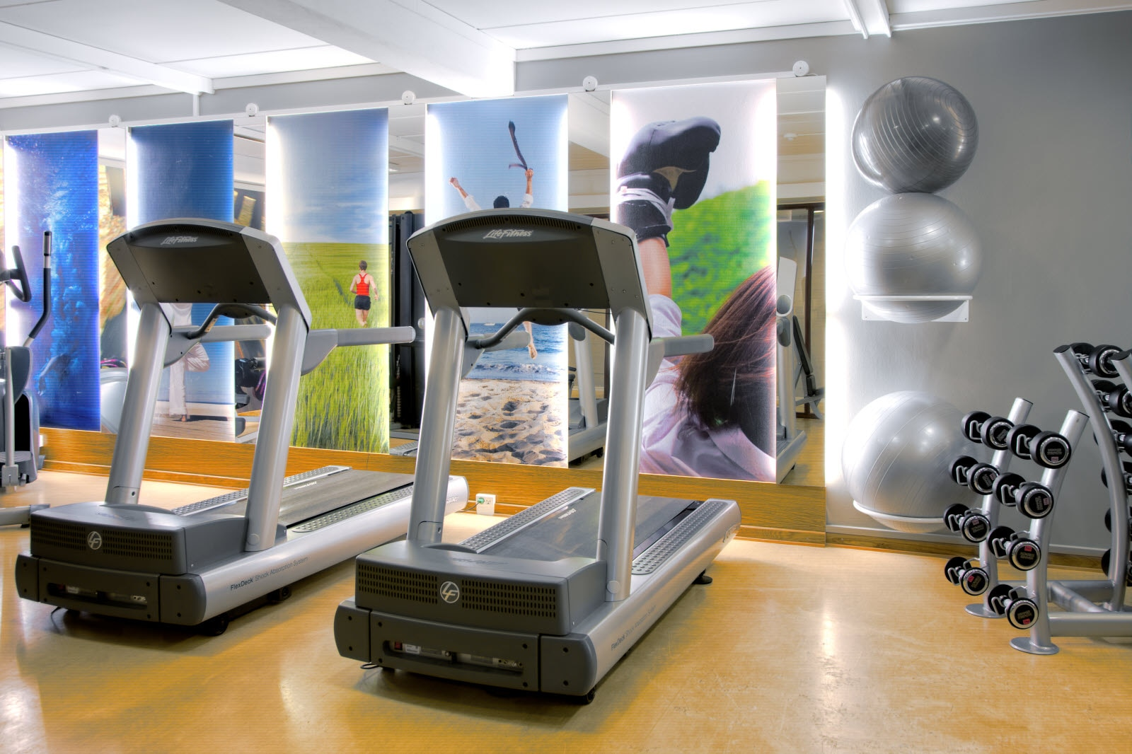 Scandic Bygholm Park, gym